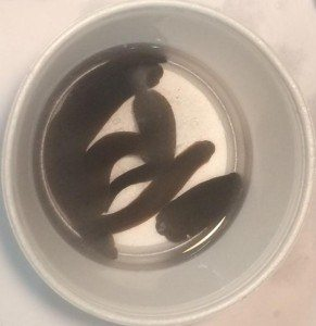 Large Leeches